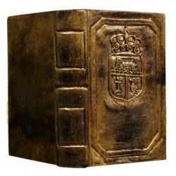 Libro resina